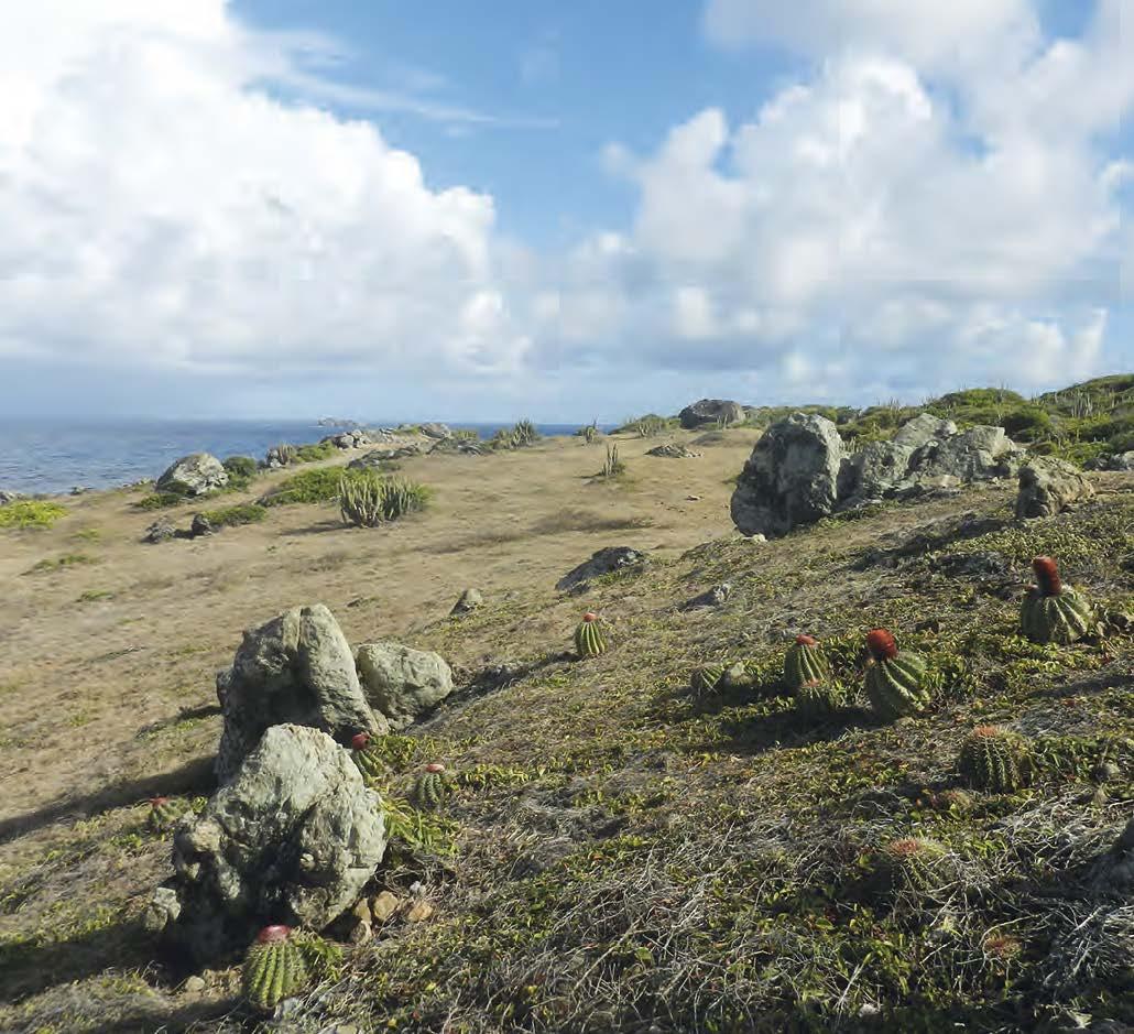 Babit Point, un beau site sauvage Babit Point, a beautiful undeveloped site