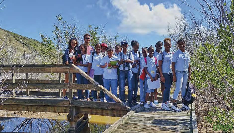 Des collégiens de Marigot dans la mangrove | Middle school students from Marigot in the mangrove