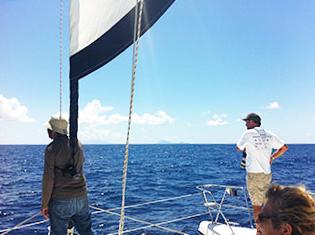 Monitoring of marine mammals