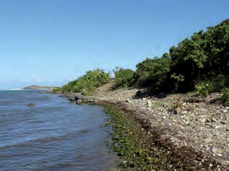 La plage nettoyée après l'enlèvement de l'épave Beach clean up after the removal of the shipwreck