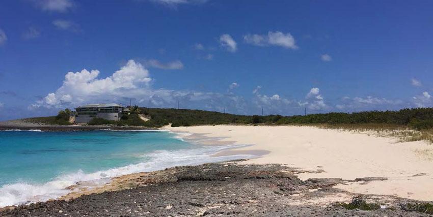 Une plage restée naturelle, idéale pour la ponte des tortues marines - An undeveloped beach, an ideal place for sea turtles to lay their eggs