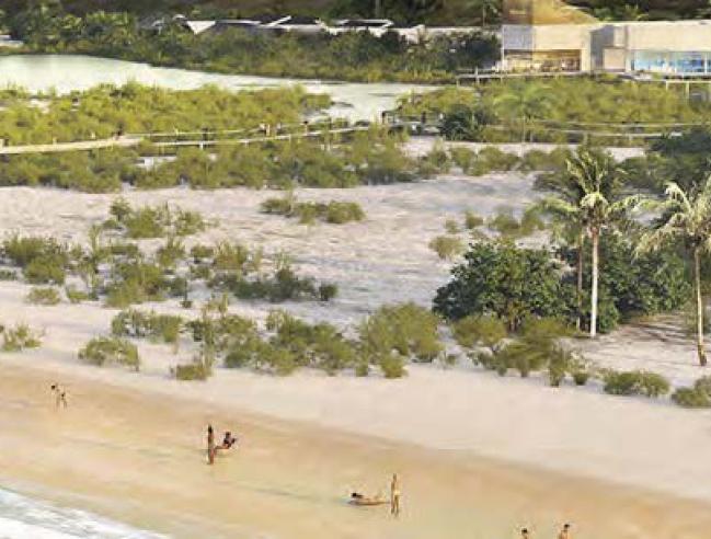 Aperçu de l'Institut caribéen de la biodiversité insulaire