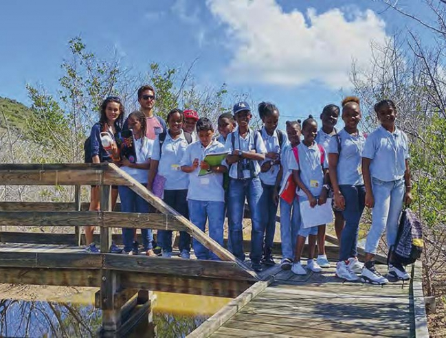 Des collégiens de Marigot dans la mangrove | Middle school students from Marigot in the mangrove