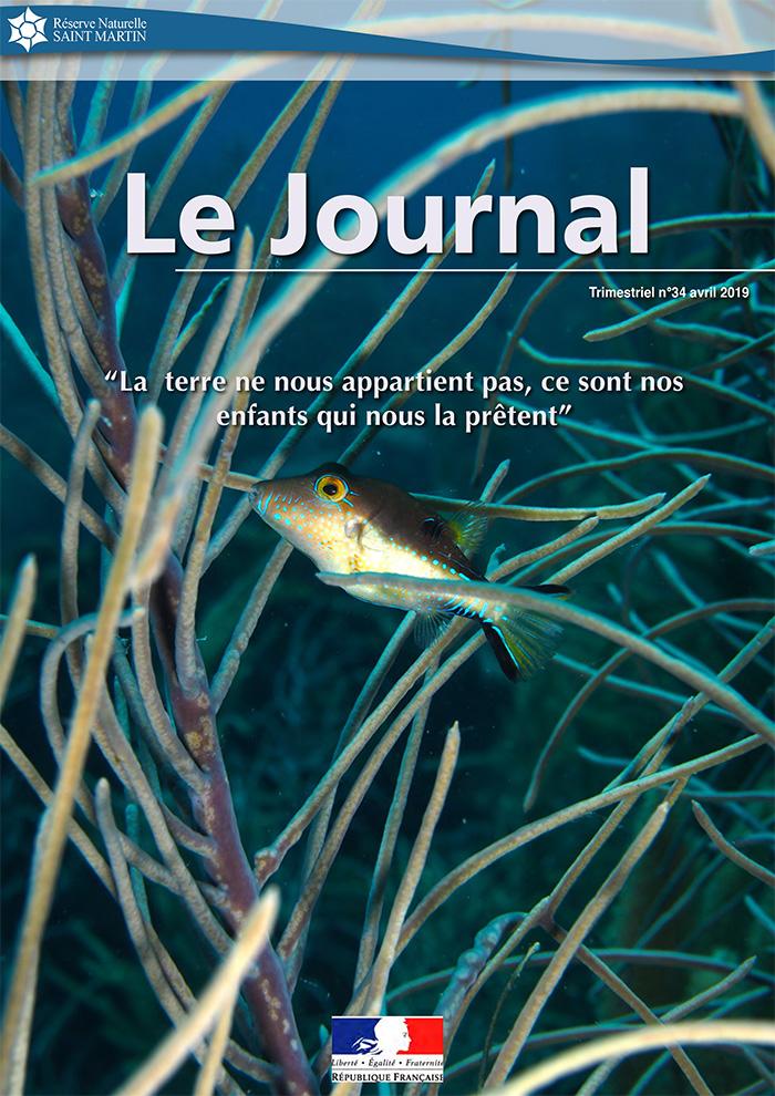 Journal #34 RNNSM