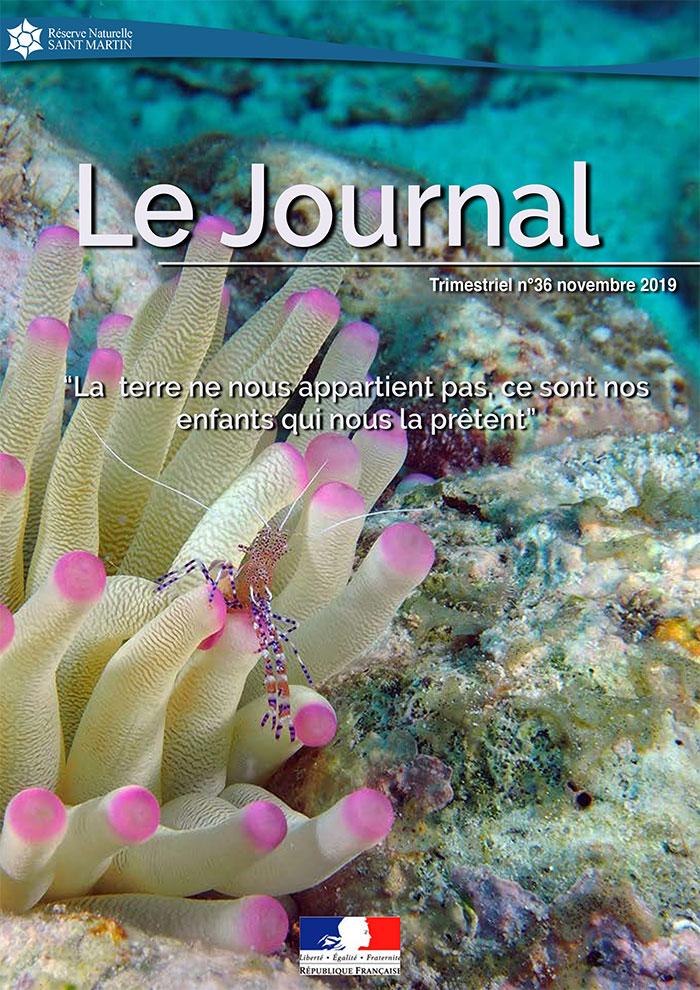 Journal #36 RNNSM