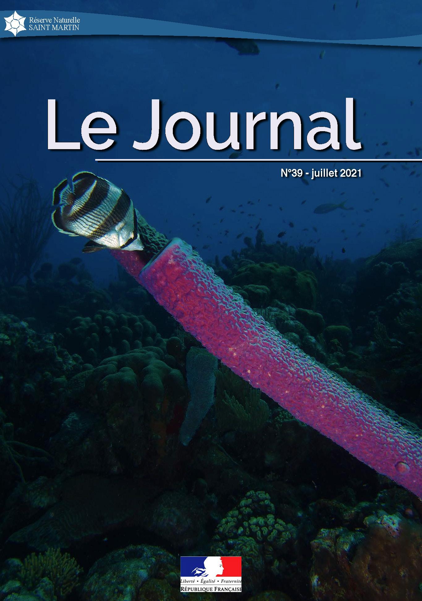 Journal #39 RNNSM