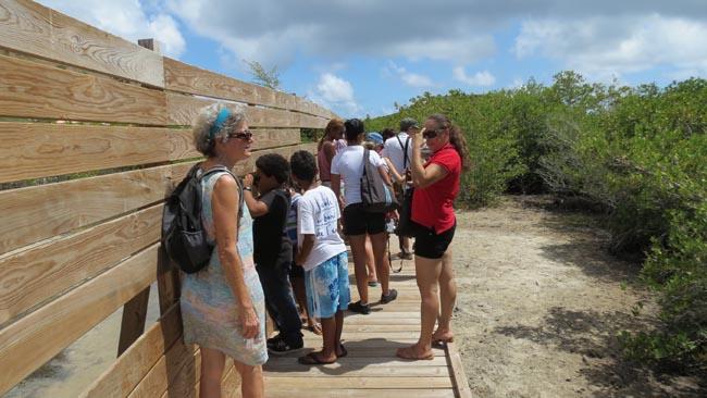 Le sentier de découverte à l'étang de la Barrière | The nature trail on the Etang de la Barrière