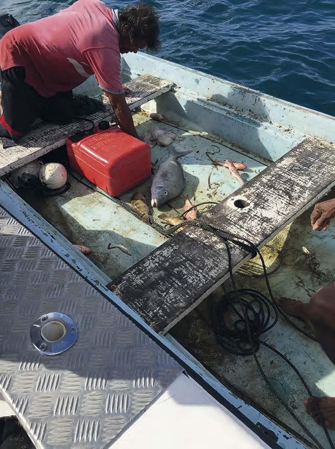 Contrôle d'un pêcheur en mer | Control of a fisherman at sea
