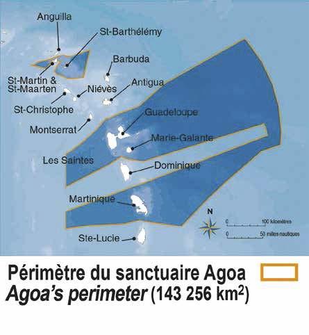 REMMOA couvre toute la superficie du sanctuaire AGOA   REMMOA covers the area of the Agoa protected area