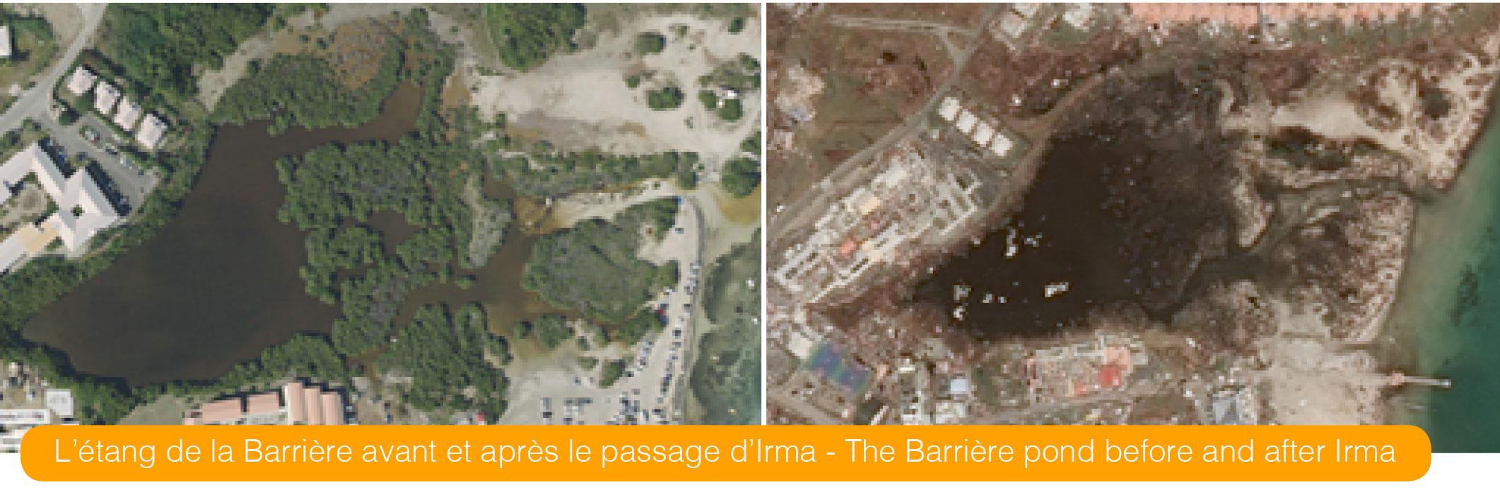 L'étang de la Barrière avant et après le passage d'Irma - The Barrière pond before and after Irma