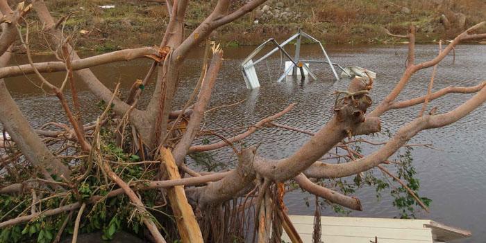L'étang de l'Anse Marcel - The Anse Marcel pond