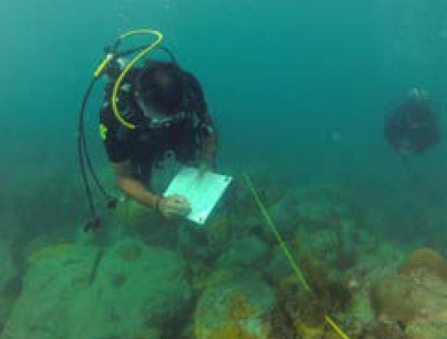 Collecte de données sous-marines | Collection of underwater data