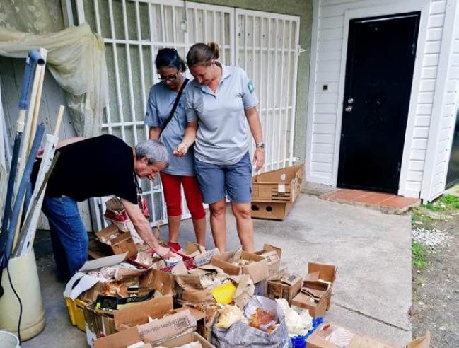- Une partie de la donation de coquillages - A portion of the donated shells