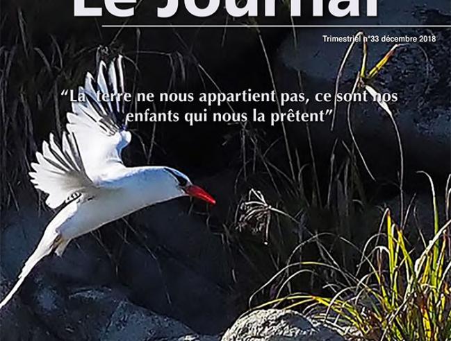 Journal #33 RNNSM