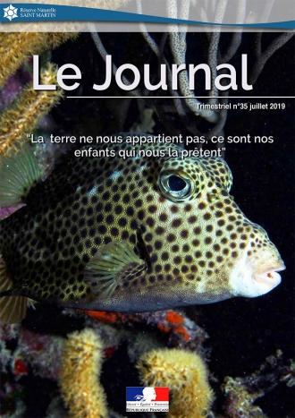Journal #35 RNNSM