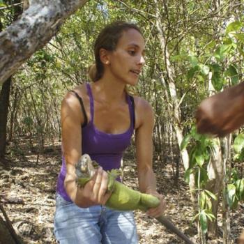 Chloé Rodrigues et un spécimen d'iguane des Petites Antilles Chloé Rodrigues with a Lesser Antillean Iguana