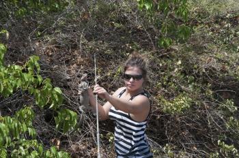 Caroline Fleury et un iguane des Petites Antilles (Iguana Delicatissima) | Caroline Fleury holding an iguana (Iguana Delicatissima)