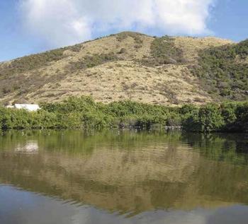 L'étang de la Barrière | The Barrière pond