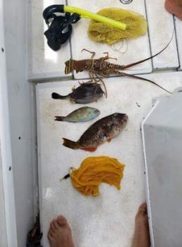 Pêche illégale pendant le confinement