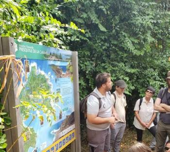 Sortie sur le terrain - A field trip À Saint-Martin, les espèces exotiques envahissantes sont nombreuses, à terre et en mer, et notamment : la liane-corail (Antigonon leptopus), l'iguane commun (Iguana iguana), le singe vert (Chlorocebus sabaeus), la mangouste indienne, l'algue Haliphola stipulacea, le poisson-lion (Pterois volitans). Sans parler du chat, animal de compagnie friand de caresses, mais aussi redoutable prédateur des oiseaux et lézards qui fréquentent nos jardins.