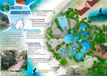 Schéma d'intention de l'Institut caribéen de la biodiversité insulaire