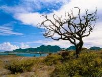 Saint-Martin's landscape